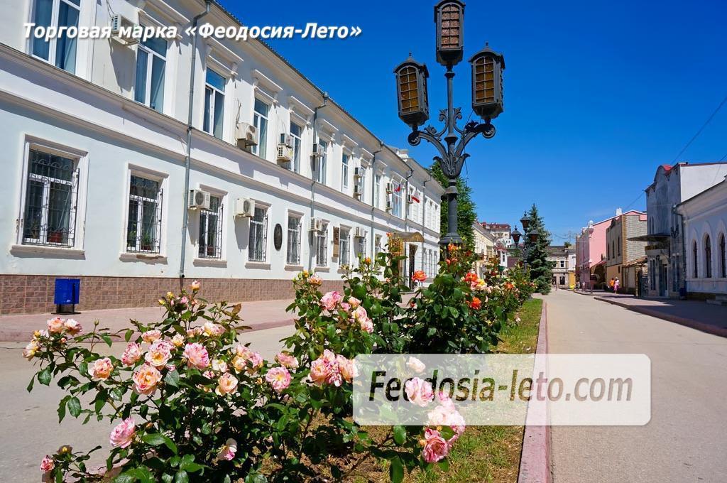 Феодосия - цветущий город