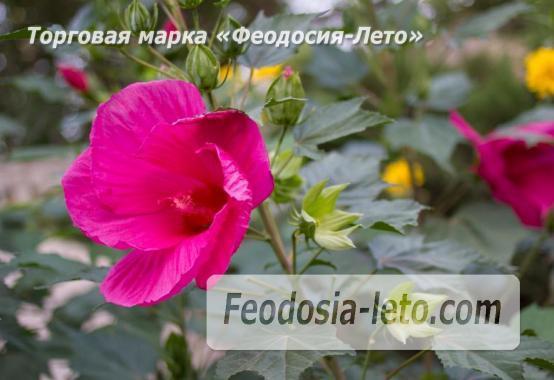 5 комнатный коттедж в Феодосии, улица Садовая - фотография № 9