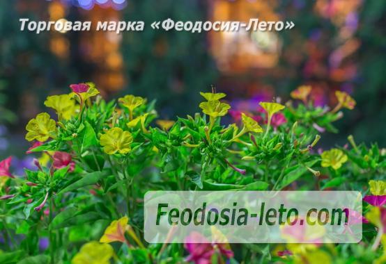 База отдыха на Золотом пляже в Феодосии на Керченском шоссе - фотография № 17