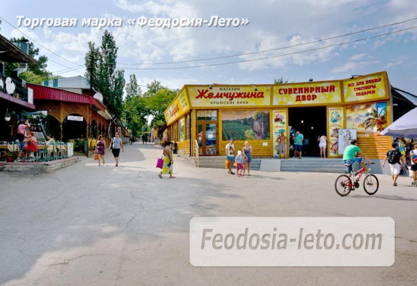 Центральный пляж Камешки в Феодосии - фотография № 18
