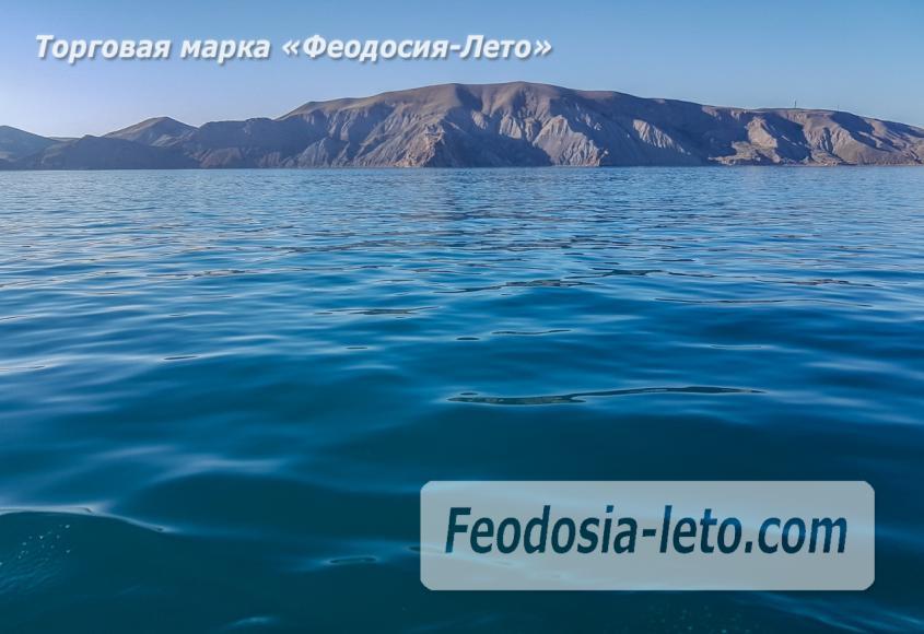 Морские экскурсии в Феодосии - фотография № 32