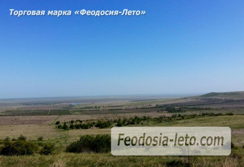 Крым Феодосия Коктебель. Природный парк Гора Клеменьева - фотография № 4