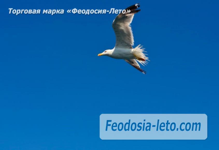 Морские экскурсии в Феодосии - фотография № 8