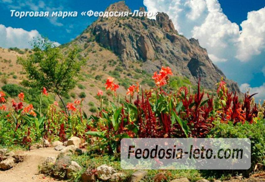 Карадагский заповедник в Крыму - фотография № 9