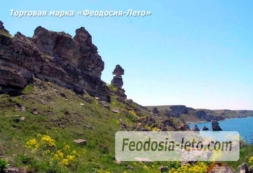 Карадагский заповедник в Крыму - фотография № 10