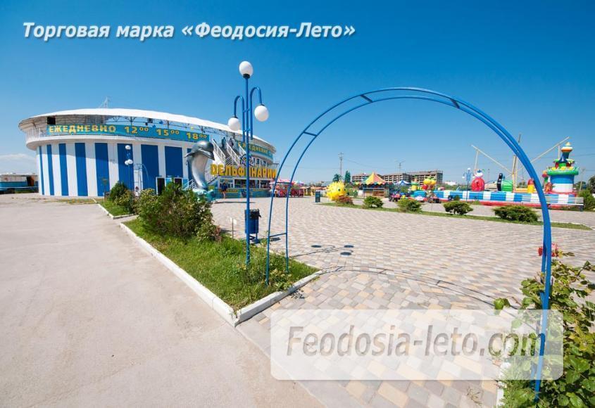 Крым Феодосия Дельфинарий Немо - фотография № 10