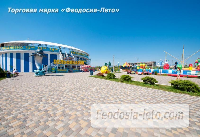 Крым Феодосия Дельфинарий Немо - фотография № 14