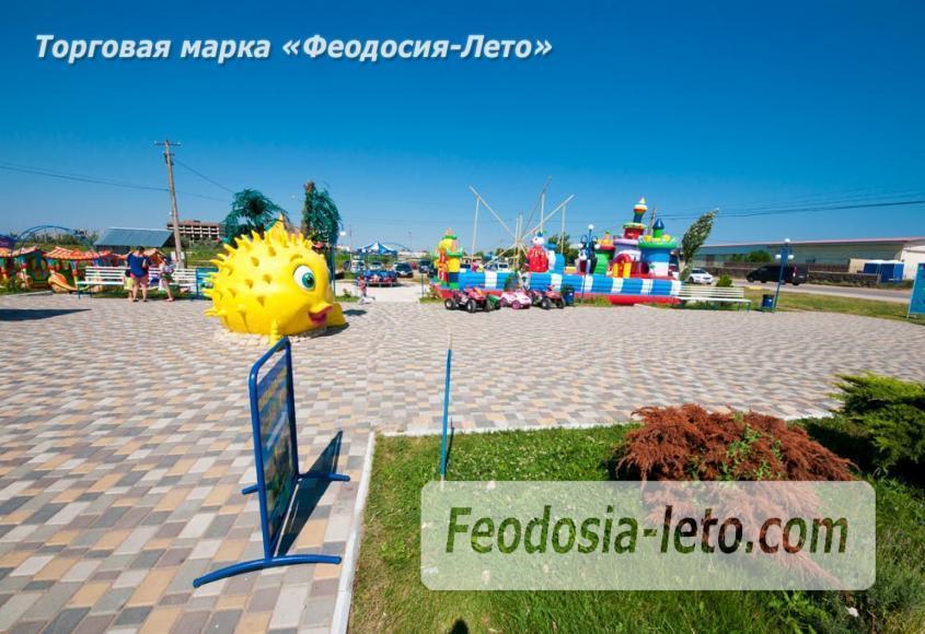 Крым Феодосия Дельфинарий Немо - фотография № 12