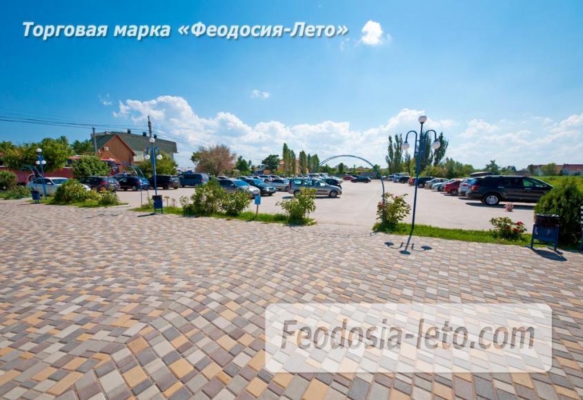 Крым Феодосия Дельфинарий Немо - фотография № 13