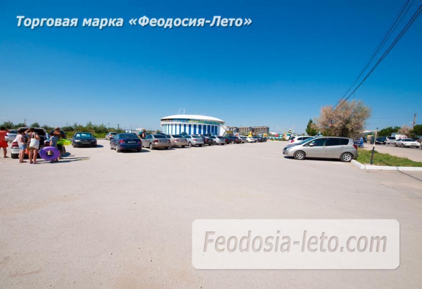 Крым Феодосия Дельфинарий Немо - фотография № 16