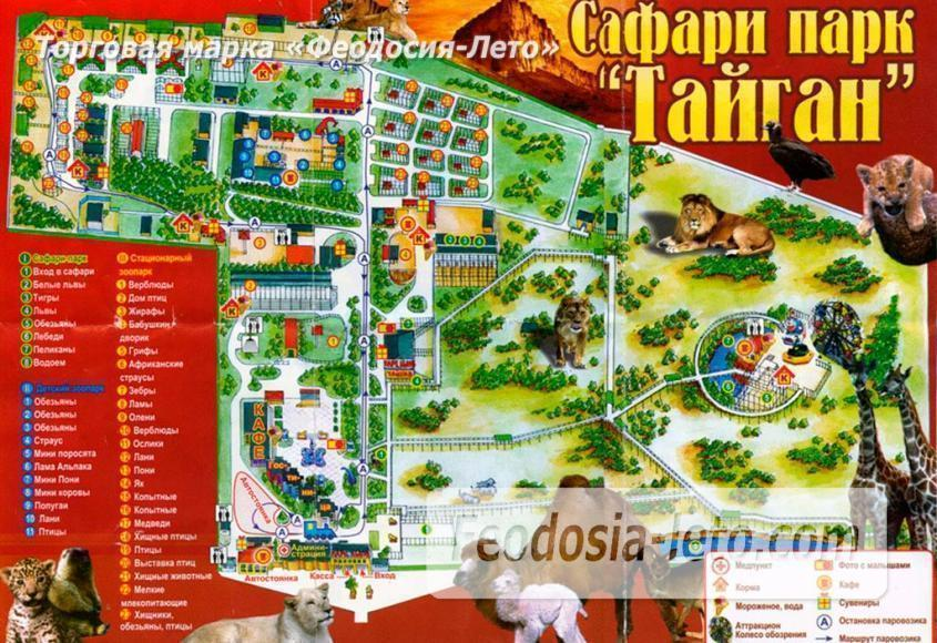 Крым Белогорск парк львов Тайган - фотография № 1