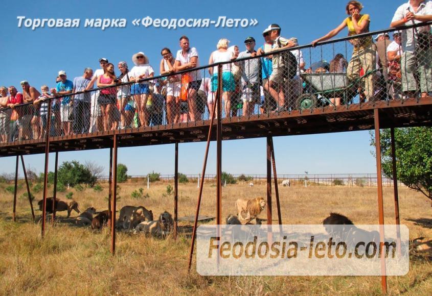 Крым Белогорск парк львов Тайган - фотография № 11