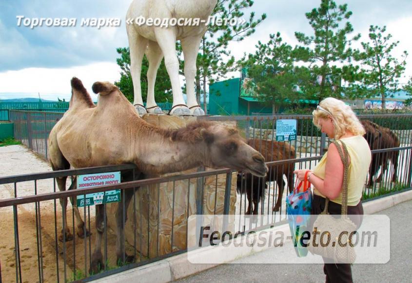 Крым Белогорск парк львов Тайган - фотография № 16