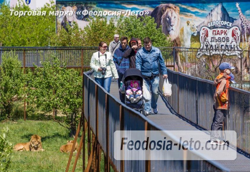 Крым Белогорск парк львов Тайган - фотография № 19