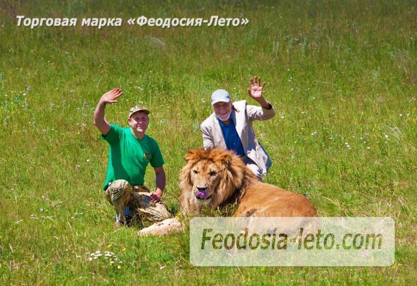 Крым Белогорск парк львов Тайган - фотография № 3