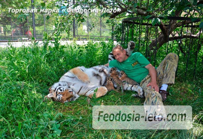 Крым Белогорск парк львов Тайган - фотография № 7