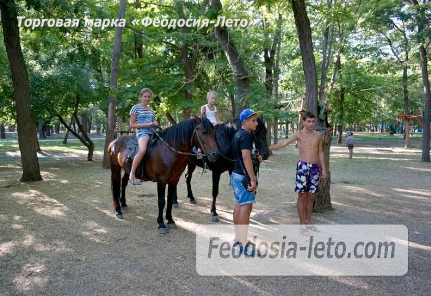 Комсомольский парк в Феодосии - парки города - фотография № 23