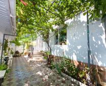 Во дворе дома в Феодосии по переулку Военно-морскому - фотография № 8