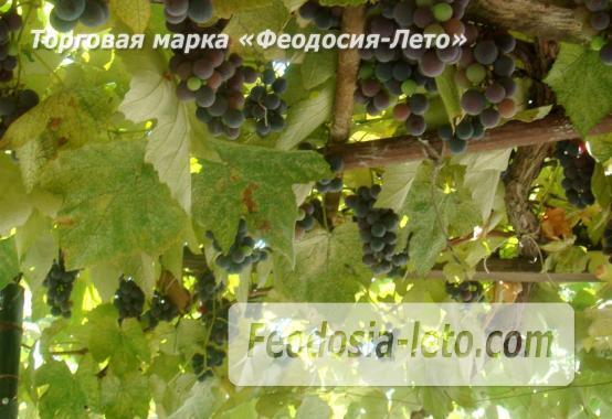 Дом в Феодосии у моря, улица Русская - фотография № 11