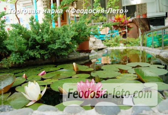 4 комнатный коттедж в Феодосии на улице Виноградная - фотография № 2