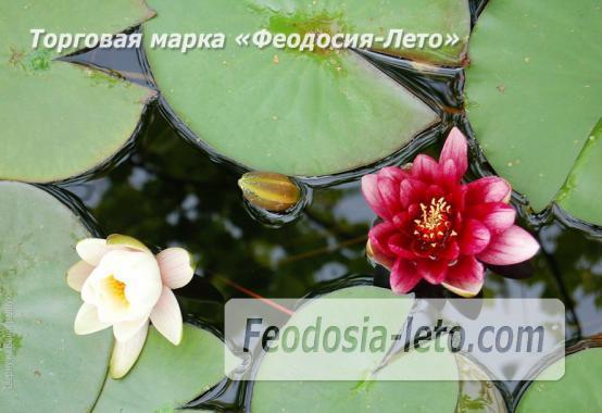 4 комнатный коттедж в Феодосии на улице Виноградная - фотография № 16