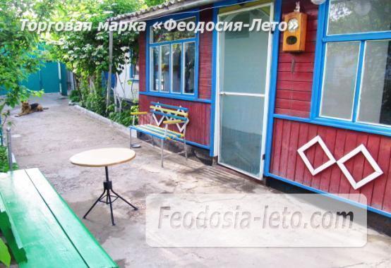 Частный сектор в Феодосии, Ближние камыши на улице Проездная - фотография № 15