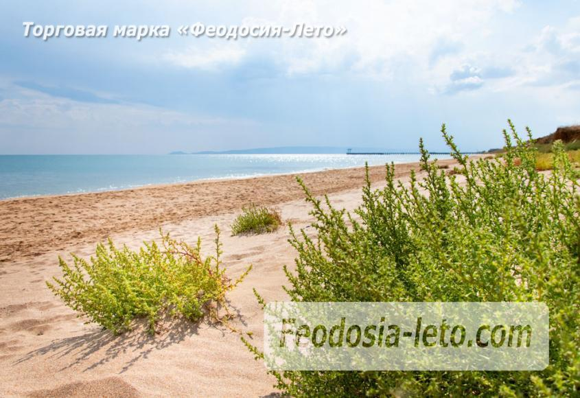 Дикий пляж на Песчаной балке п. Приморский у Феодосии - фотография № 11