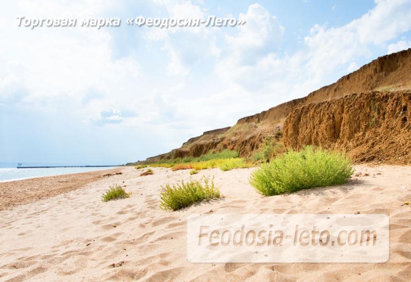 Дикий пляж на Песчаной балке п. Приморский у Феодосии - фотография № 9