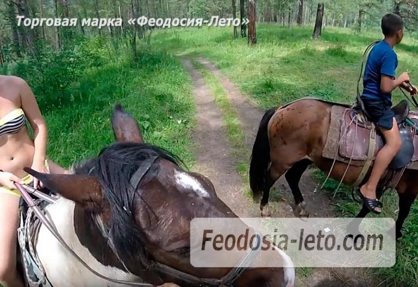 Конные прогулки в Феодосии - фотография № 2