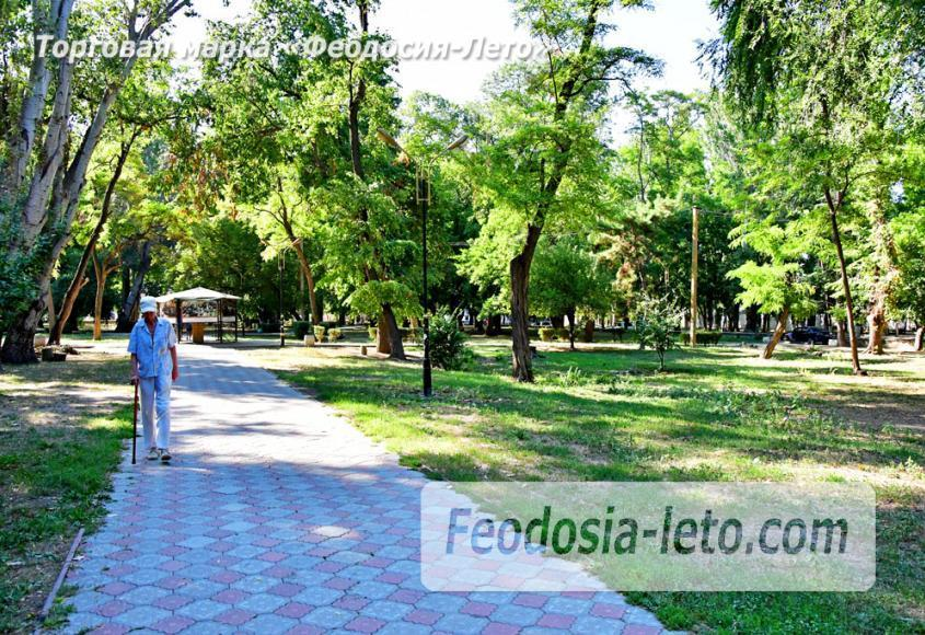 Парки Феодосии - Морсад - фотография № 11