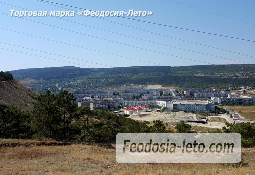 Экскурсии в Феодосии. Лес и Лысая гора - фотография № 10