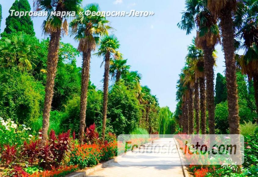 Никитский ботанический сад в г. Никита рядом с Ялтой - фотография № 13