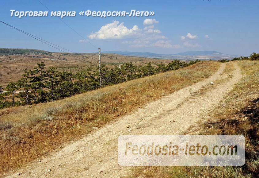 Экскурсии в Феодосии. Лес и Лысая гора - фотография № 11