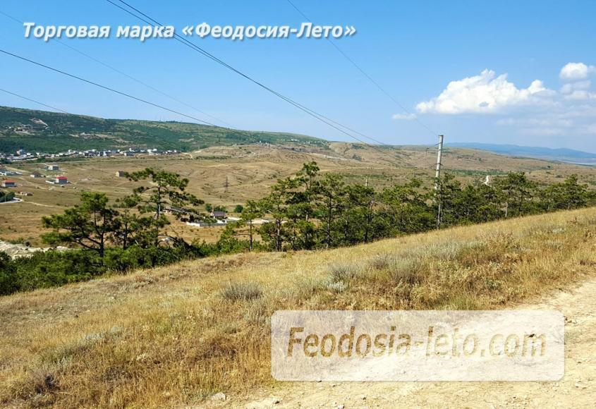 Экскурсии в Феодосии. Лес и Лысая гора - фотография № 13