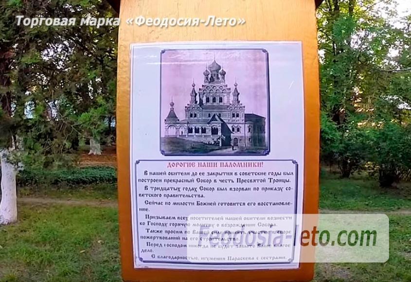 Экскурсия в Топловский монастырь - фотография № 16