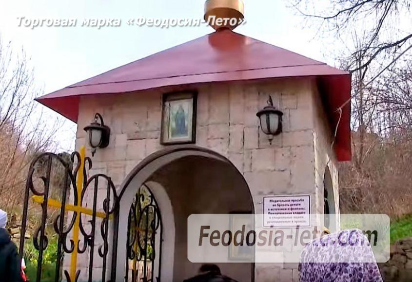 Экскурсия в Топловский монастырь - фотография № 17