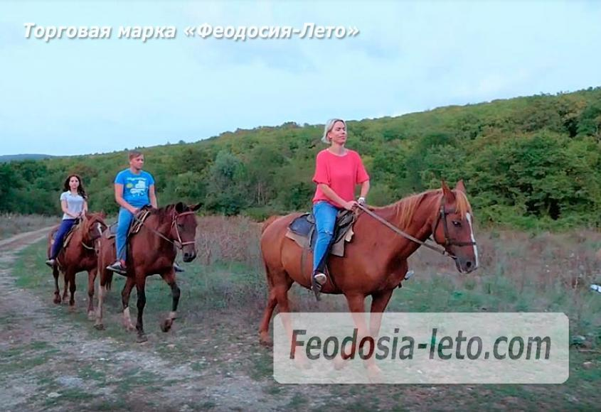 Конные прогулки в Феодосии - фотография № 1