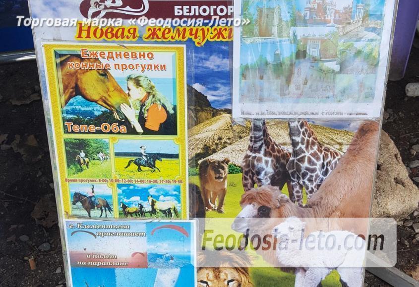 Точка продажи билетов в Феодосии на экскурсии - фотография № 4