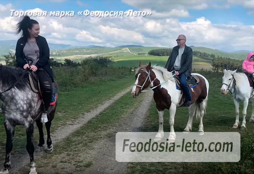 Конные прогулки в Феодосии - фотография № 3