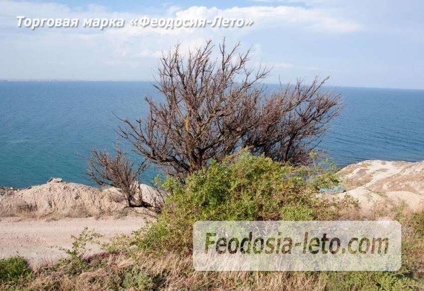 Экскурсии в Феодосии. Маяк и бухты - фотография № 31