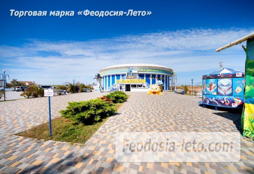 Дельфинарий Немо в Феодосии - фотография № 17