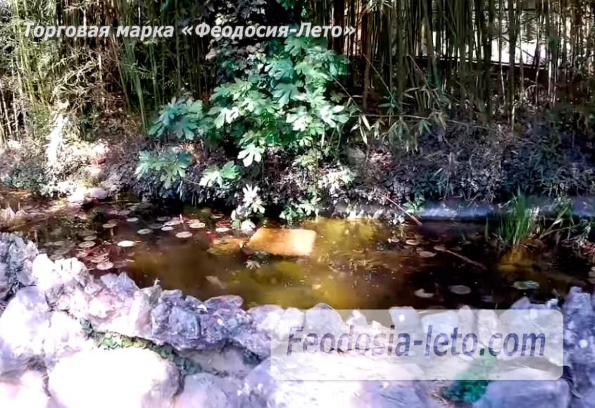 Никитский ботанический сад - фотография № 9