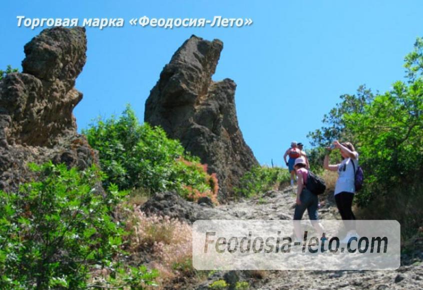 Карадагский заповедник в Крыму - фотография № 3
