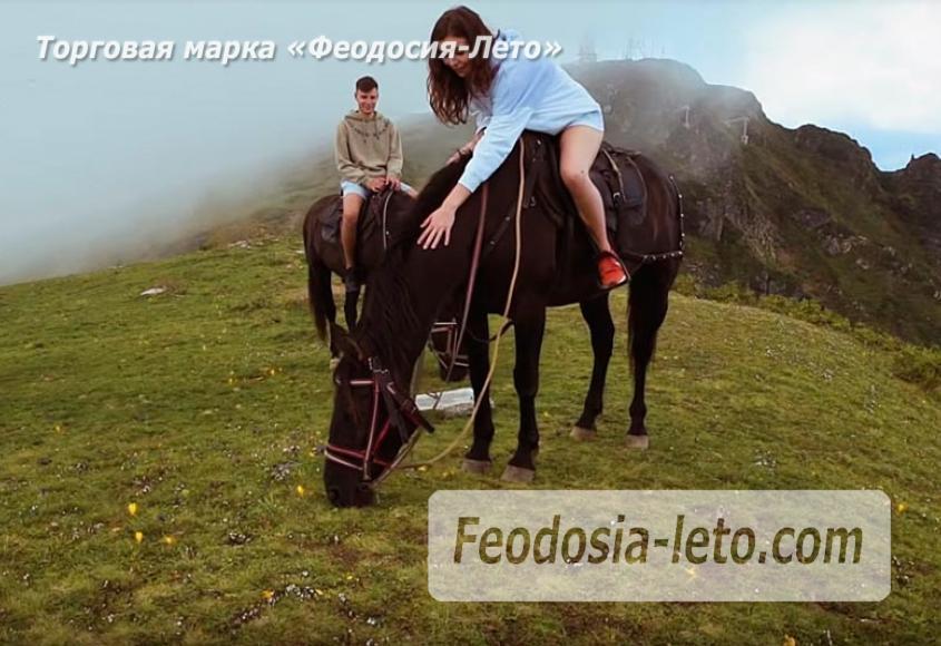Конные прогулки в Феодосии - фотография № 5