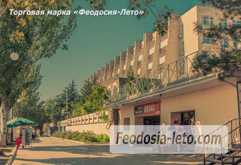 ПешеходнаяэкскурсияпоФеодосии - фотография № 4