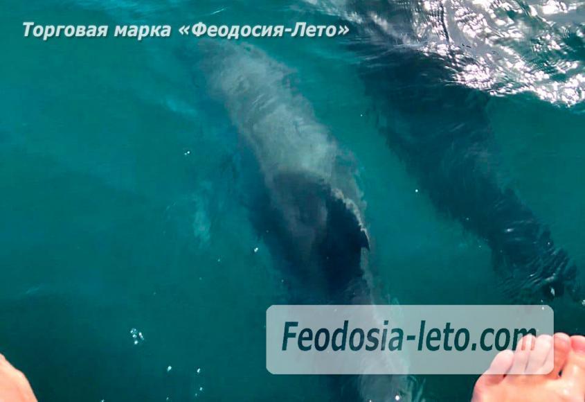 Морские прогулки из Феодосии - фотография № 5