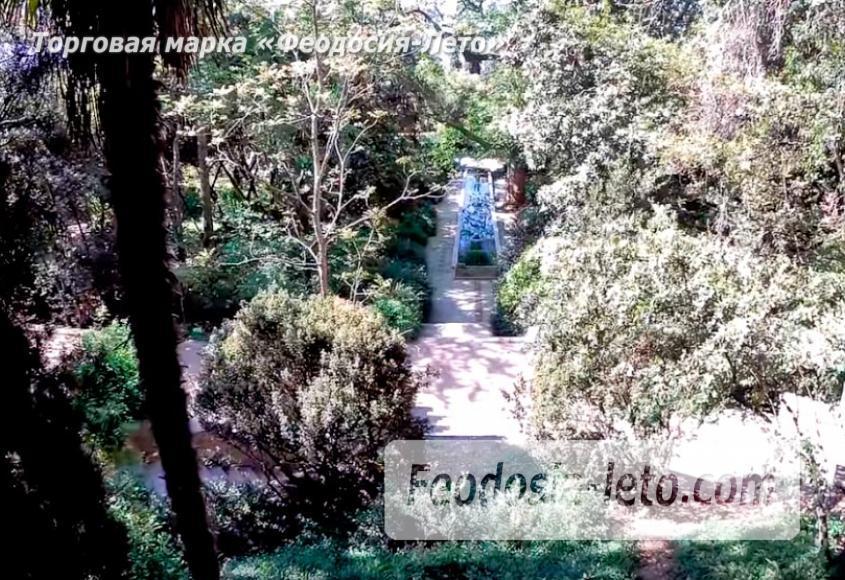 Никитский ботанический сад - фотография № 14