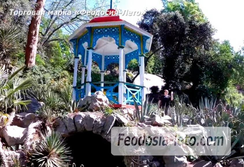 Никитский ботанический сад - фотография № 17