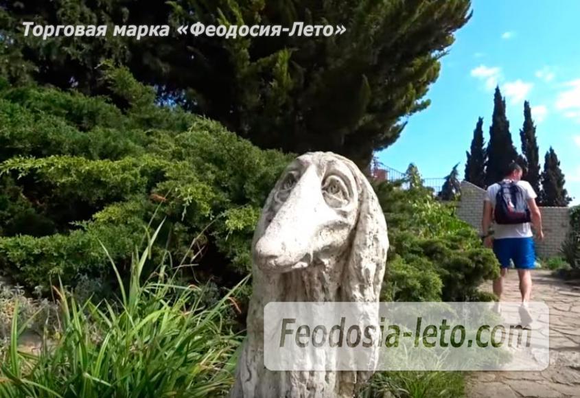 Никитский ботанический сад - фотография № 18