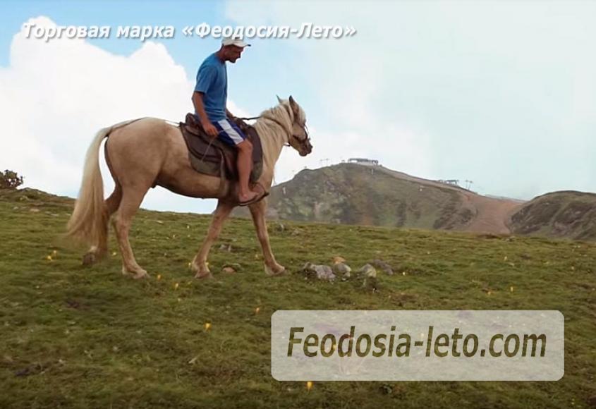 Конные прогулки в Феодосии - фотография № 7